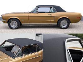 Ford_Mustang_Vinyl